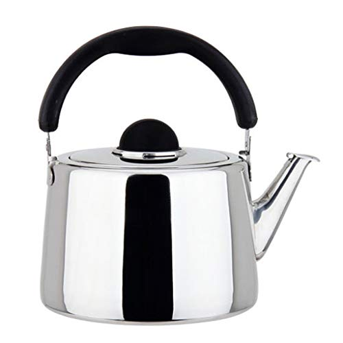 Bollitore per induzione Bollitore per tè Fisarmonica Teiera per Esterno in Acciaio Inox 304 (Dimensioni : 2.5L)