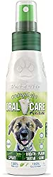 Peppermint Oral Care Spray for Cats