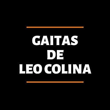 Gaitas De Leo Colina