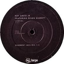 Roy Davis Jr / Gabriel (Basement Jaxx Remixes)