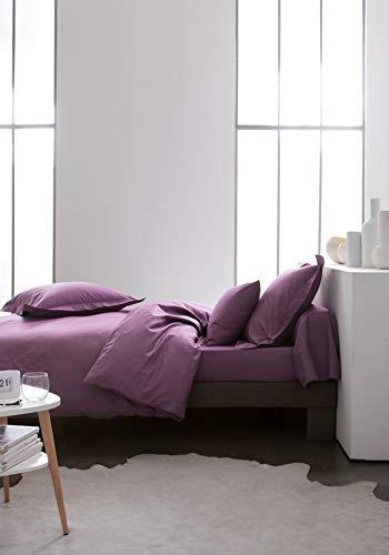 Today Drap Plat 100% Coton-Violet-240x300 cm