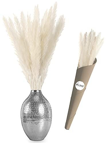 WILDOR® - Pampasgras [Weiß, 70cm] - Extra fluffige Trockenblumen mit sicherer Verpackung - Wohnzimmer Deko - Boho Deko - Trockenblumenstrauß (Weiß, 20)