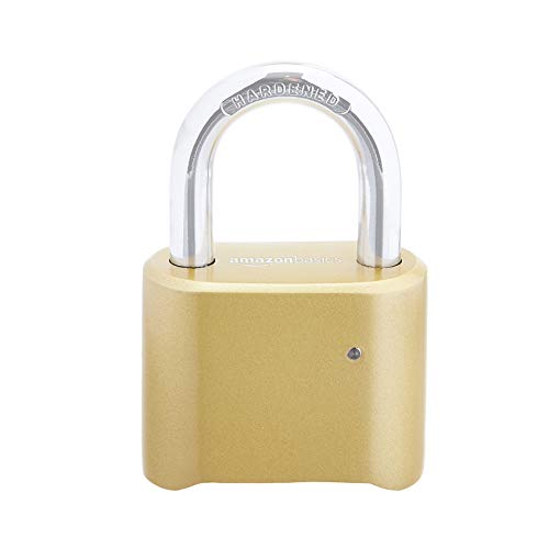 Amazon Basics – AB-PL106 Vorhängeschloss, 2 Stück, goldfarben