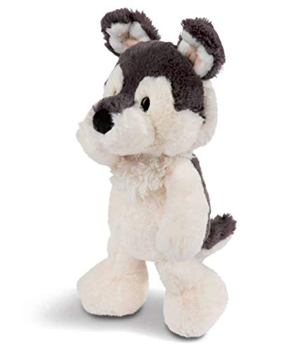 NICI 45715 Kuscheltier Hund Husky Swante 25 cm, Schlenker – Das süße Hunde Plüschtier für Jungen, Mädchen, Babys und Kuscheltierliebhaber
