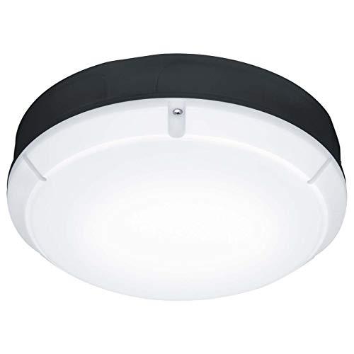 THORNeco Zumtobel Group LED-Wandanbauleuchte Lara LED #96666106 300 1200 840 BLK Lara;Lara Decken-/Wandleuchte 5037319347217
