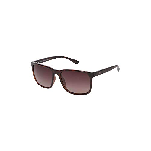 Tommy Hilfiger Gradient Wayfarer Men Sunglasses - (TH 1530 C2 S | 57 | Brown Colour Lens)