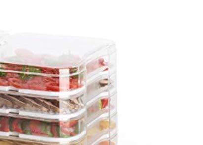 Klarstein Yoyoyofruit - apparecchio essisccatore, essicatore di frutti, per la preparazione di Joghurt, Dispositivo combinato 2 in 1, 2 x 5 piani, impilabile, 550 Watt, Display LCD, nero