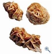 Sandrosen ca 2-3 Stck, ca. 8 - 15 cm Durchmesser - Kilogramm Roh-Mineralien ...