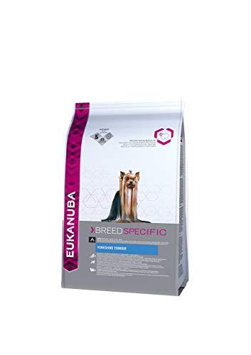 Eukanuba Breed Specific - Alimento Completo specifico per Yorkshire Terrier Adulti, Crocchette al Pollo - 1 Kg