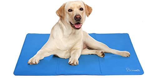 tapis rafraichissant chien aldi
