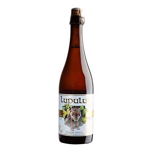 7. Lupulus - Cerveza rubia artesana