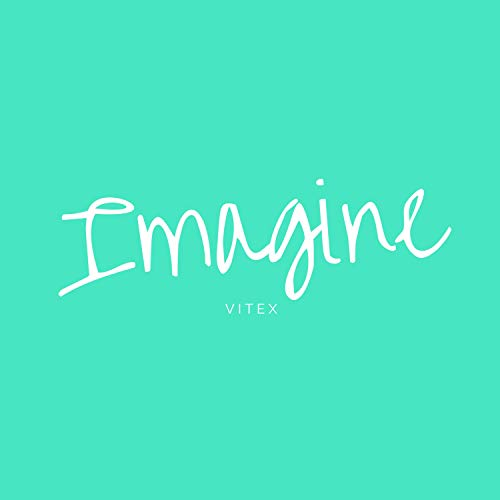 Imagine (Instrumental Version)