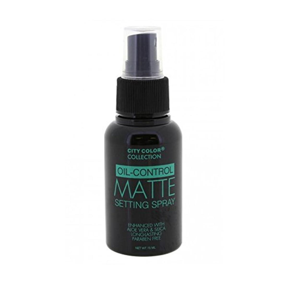 ロープ備品話す(6 Pack) CITY COLOR Oil-Control Matte Setting Spray (並行輸入品)