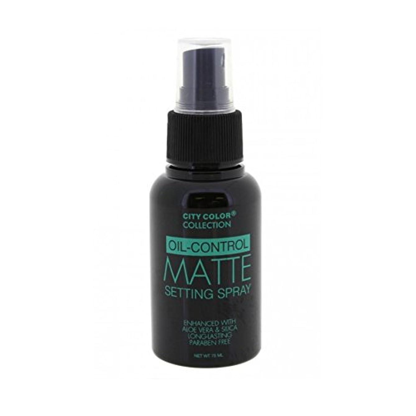 ウッズ労働者スカルク(6 Pack) CITY COLOR Oil-Control Matte Setting Spray (並行輸入品)