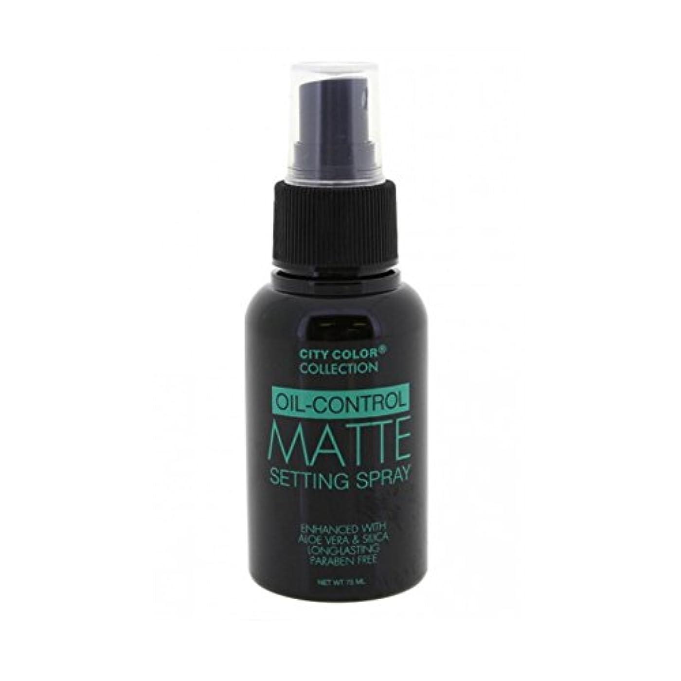 衝動クラシック検査官(6 Pack) CITY COLOR Oil-Control Matte Setting Spray (並行輸入品)