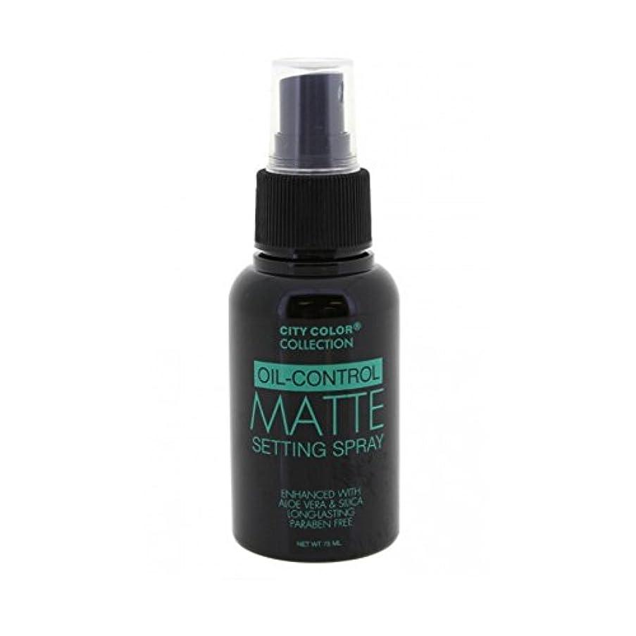 責める私達グレートバリアリーフ(6 Pack) CITY COLOR Oil-Control Matte Setting Spray (並行輸入品)