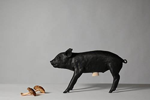 Areaware Bank in The Form of a Pig (Matte Black)