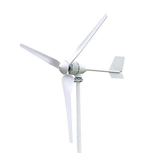 FLYT 1000W 24V Gran Turbina Eólica Generador de Viento de 3 Palas 1KW Aerogeneradores Horizontal Alta Eficiencia Para Uso Doméstico