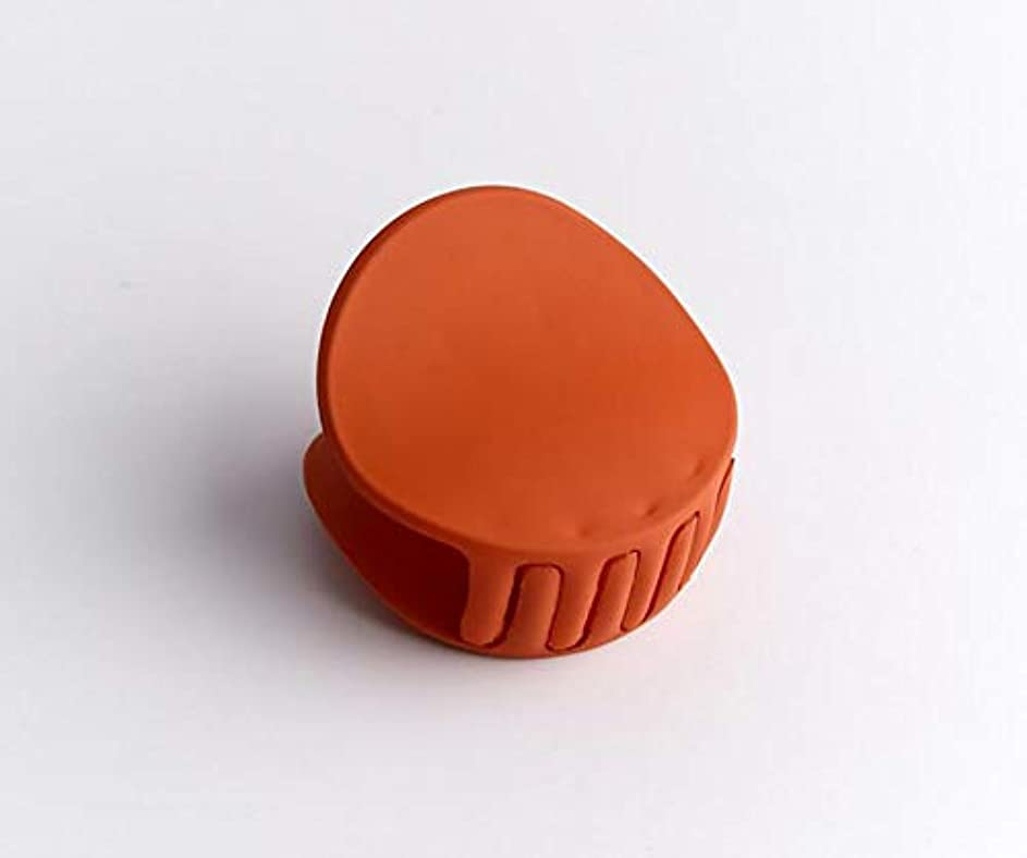 テンポ浸した欠如HuaQingPiJu-JP 1Pc DIYマジックヘア女性の女の子ヘアピンヘアマットテクスチャクリップパーティーヘアスタイルツールアクセサリー(オレンジ)