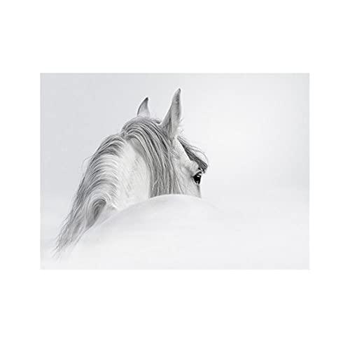VSOO Arte de Pared Sin Marco Impresión de Lienzo Cuadro Caballo Blanco Decoración Moderna de Sala de Estar y Dormitorio-80cmx120cm (32