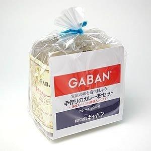 食塩無添加 手作り カレー セット 100g 20人分 ( 減塩カレーに最適 )