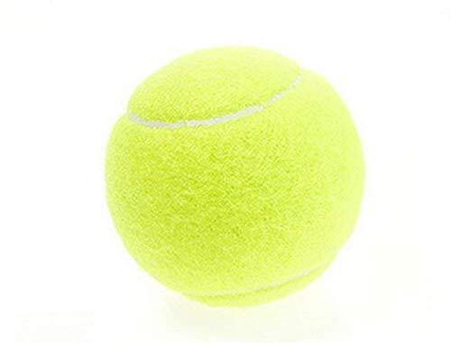 U/K Gelb Tennis Trainer Bälle Professionelle Ausbildung Sport Spielen Cricket Langlebig Hohe Elastizität Sport Hundespielzeug Tennisball für Kinder oder Haustier Packung mit 1 Hohe QualitätSicherheit
