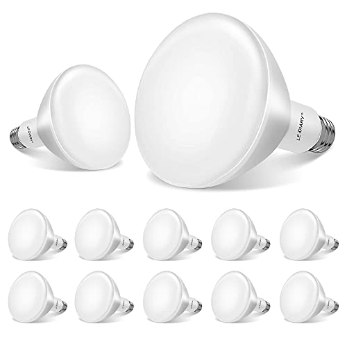 LEDIARY 12-Pack BR30 LED Recessed Light Bulbs, UL Listed LED Bulb for Cans, Dimmable, 5000K Daylight, 8W=65W, 650LM Indoor Flood Lights - E26 Medium Base