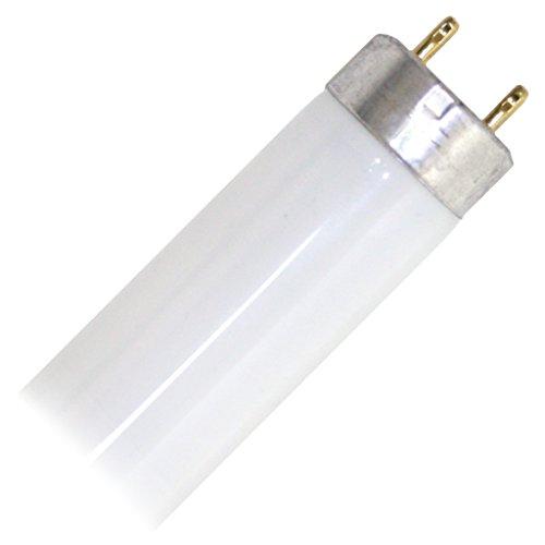 ProLume Eco-Shield Shield F32T8/835/ECO 109400 F32 T8 3500K 86CRI ECO ProlumeME, 25 Piece