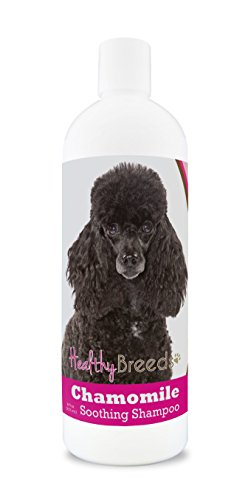 Healthy Breeds Chamomile Dog Shampoo & Conditioner with Oatmeal & Aloe for Poodle, Black - OVER 200 BREEDS - 8 oz - Gentle for Dry Itchy Skin - Safe with Flea and Tick Topicals