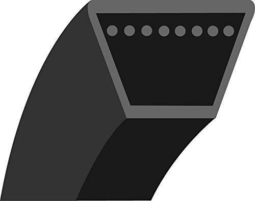 GREENSTAR Keilriemen glatt Trapezform MTD für Serien, schwarz, 20299