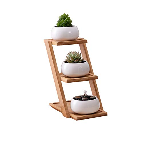 Top 10 Best Ladder Bamboo Plant Stand Reviews 2019-2020 cover image