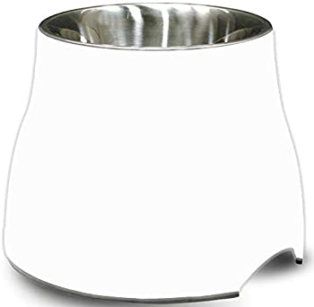 Dogit Elevated Stainless Steel Small Dog Bowl