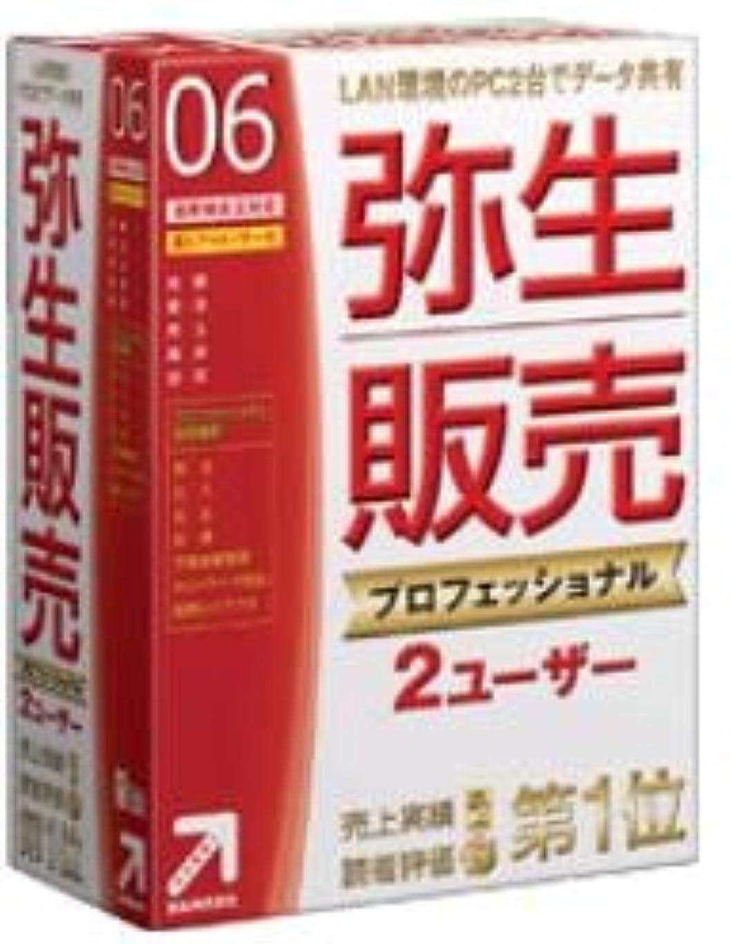 キモいヘビーお祝い【旧商品】弥生販売 プロフェッショナル 06 <2ユーザー>