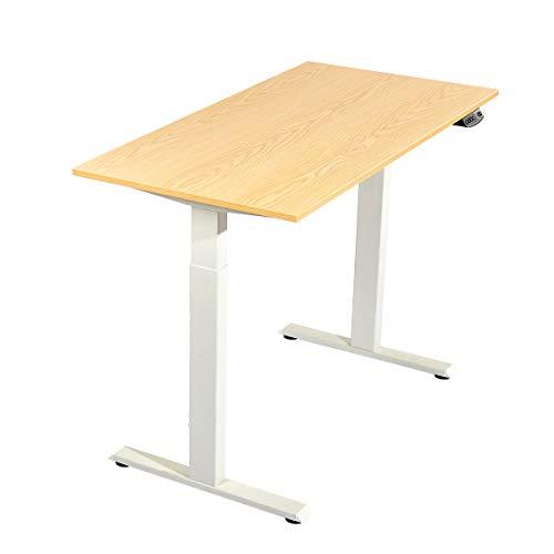 Electric Standing Desk Height Adjustable Dual Motor Sit to Stand Desk Ergonomic Stand up Desk Base Workstation (White Frame+48' x 24' Wood Color Top)