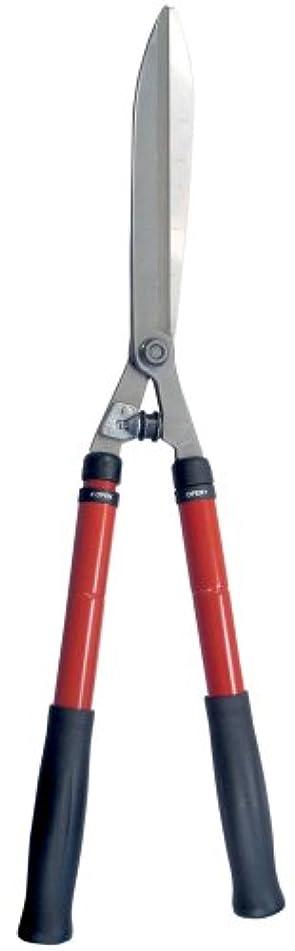 Corona HS 3950 Extendable Hedge Shear, 10-Inch Blade