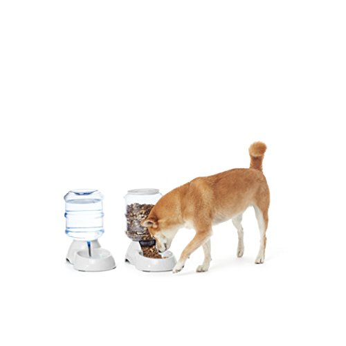 Amazon Basics Self-Dispensing Gravity Pet Feeder and Waterer
