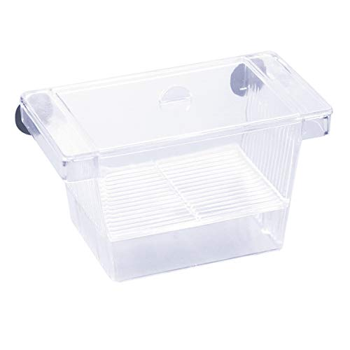 Kissral Incubadora para Peces Caja de Cría Peceras Pequeña Acuarios Accesorios con Tapa de Plástico Ventosa Caja de Plástico Transparente para Camarón Tortuga