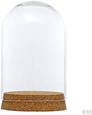 DIY Clear Glass Hemisphere Dislay Dome Cover Shade Cloche Oval Cork 12x22cm
