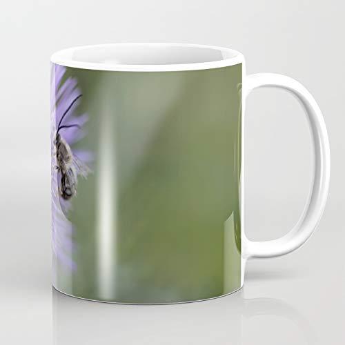 Wild Horned Bee - Taza de café
