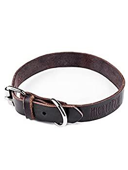 Best brown leather dog collar Reviews