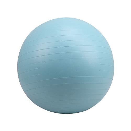 ABOOFAN Pelota auxiliar de Pilates Yoga PVC Fitness Ball a prueba de explosiones Pelota de ejercicio Balanza Azul (65cm)