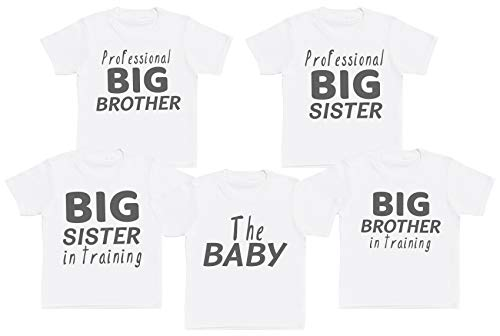 Pink, 24 Months So Relative Unisex Baby I Have An Awesome Big Sister T-Shirt Romper