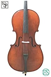 best cello brands - eastman cellos