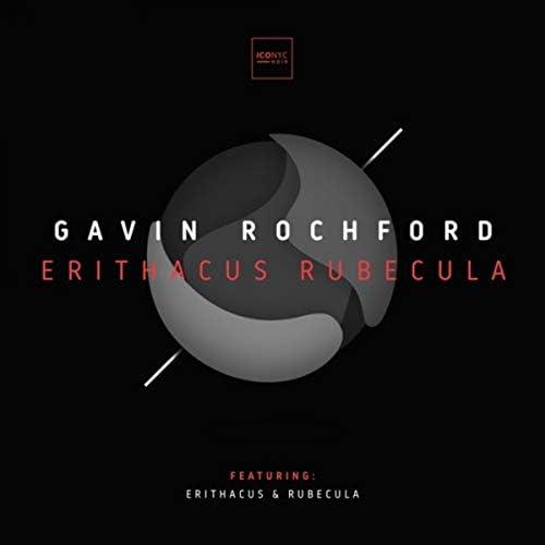 Gavin Rochford
