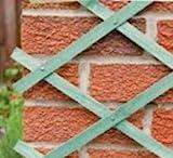 Expanding Wooden Trellises Garden Plant Support Fence Pannels 4 Sizes Trellis Available (60cm)