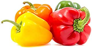 Capsicum Mix 4 Color Holland , Rich In Vitamins , Healthy & Naturally Sweet , Slightly Crisp , Premium Quality , Cleaned &...