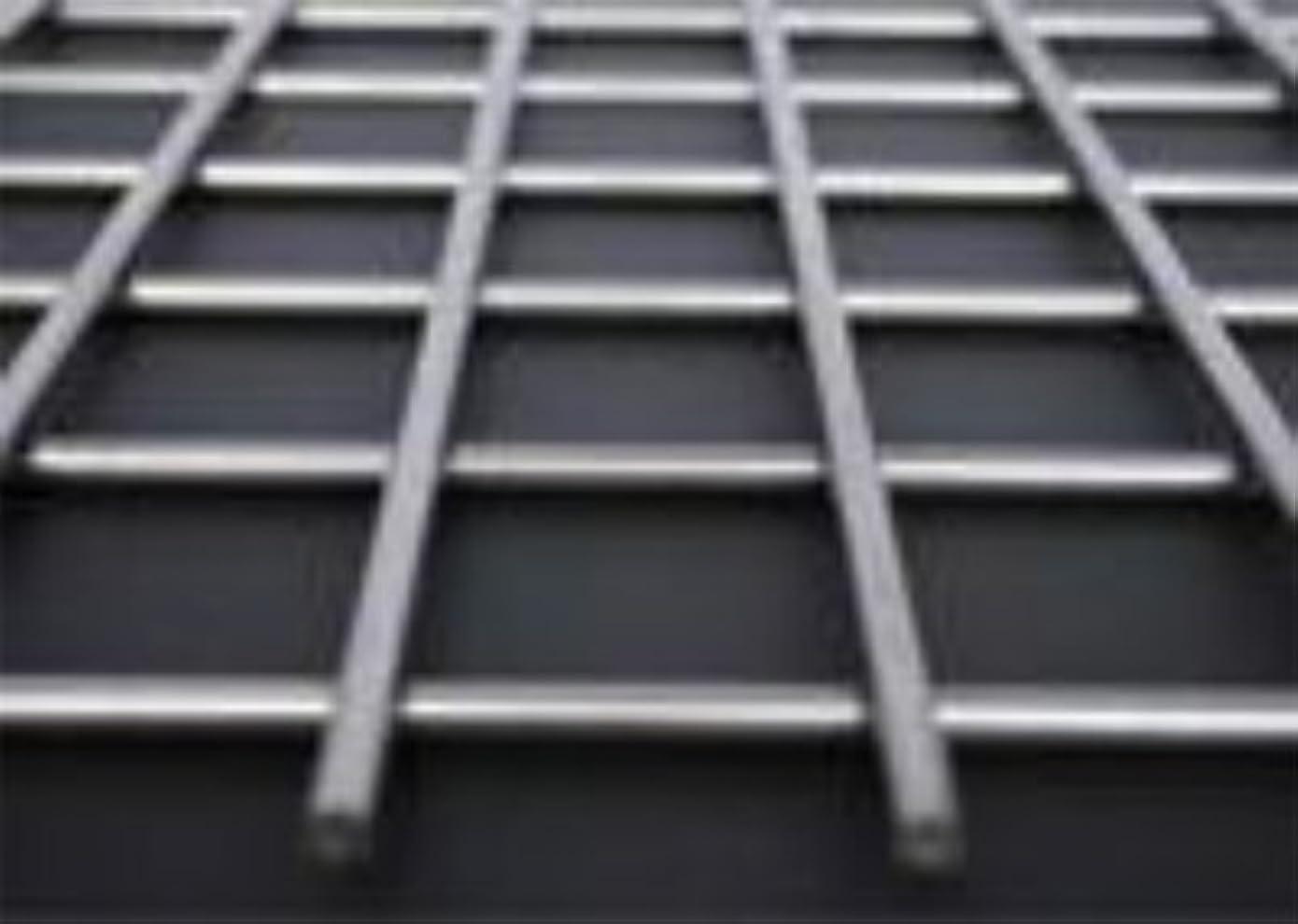 セール順応性高層ビルステンレス SUS304 ファインメッシュ 溶接金網 目開き(mm):9×19 線径(mm):1.0