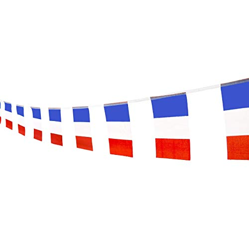 French Flags Party Pennant Banner