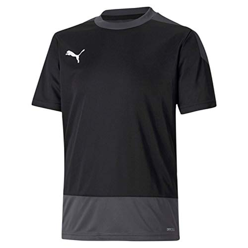 PUMA Jungen teamGOAL 23 Training Jersey Jr T-Shirt, Black-Asphalt, 164
