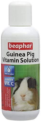 2XMulti Vitamin Solution for Guinea Pigs, 100 ml